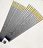 Lixia-ARRO, Nuevo 6/12 / 24pcs 32 Pulgadas Caliente de la Venta de Fibra de Vidrio Flechas Flecha de la Caza del Tiro al Arco con Consejos cambiable (Color : 24pcs)