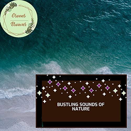 Calm Music & Massage Tribe