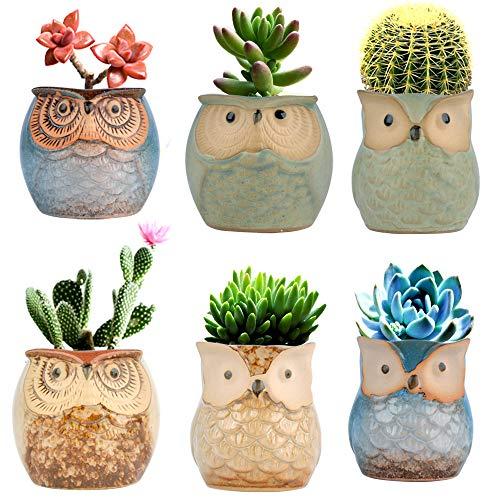Betrome Owl Pot 2.5 Inch, Ceramic Flowing Glaze Succulent Pots, Owl Planter, Mini Ceramic Pots, Bonsai Owl Pot with a Hole for Small Flower, Plant & Cactus, 6 Pcs