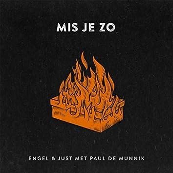 Mis Je Zo (feat. Paul De Munnik)