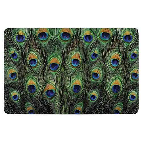 SoSung Peacock Decor Area Rug,Stunning Peacock Tail Feathers Tropical Exotic Animals Close up Picture Artwork,for Living Room Bedroom Dining Room,7'x 5',Green Mustard Navy