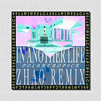 In Another Life (Zhao Remix)