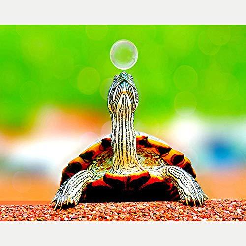 5D DIY Diamant Schilderij Borduurwerk Cross Craft Stitch Home Decor Art, Schildpad Spelen met bubbels 40X50Cm - Zonder Frame