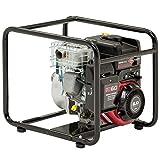 Briggs and Stratton 073010 Elite WP2-60 Bomba de agua de gasolina (50 mm, 600 L/min,...