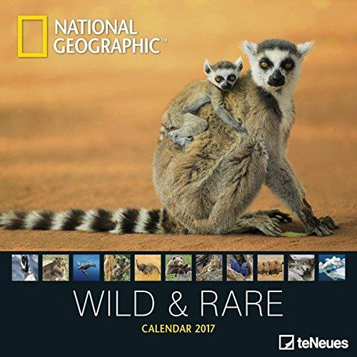 Wild & Rare 2017 NG: teNeues Tierkalender