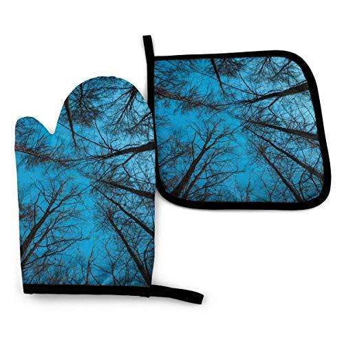 Forest at Night and Blue Sky - Juego de guantes para horno resistentes al calor, guantes de cocina gruesos y duraderos, divertidos agarradores con forro de algodón para cocina, microondas, hornear, ba