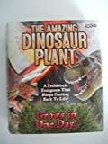 The Amazing Dinosaur Plant Grow Prehistoric Evergreen