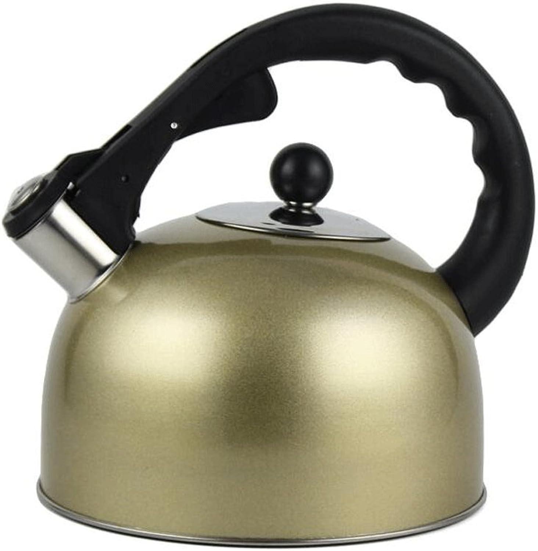 GAOLILI Bouilloire à gaz en acier inoxydable de la bouilloire de cuisine sifflet épaississeHommest grande capacité bouilloire 3L