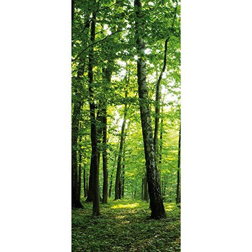 Tür Fototapete Türtapete 91x211 cm Türfolie selbstklebend o. Vlies PREMIUM PLUS - Tür Türposter Türpanel Foto Tapete Bild - Bäume Wald Sonne Wiese - no. 528, Material:91x211cm Folie (selbstkl.)