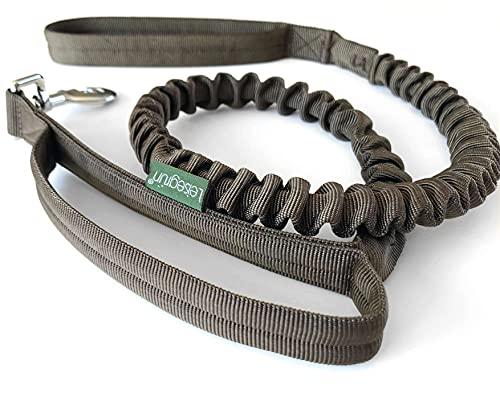 Leisegrün® Hundeleine Nylon | Elastische Führleine für Hunde mit Kurzführer & Ruckdämpfer | Länge 120 cm bis 170 cm | Braun