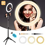 "10"" Selfie Ring Light with Tripod Stand and 3 Phone Holder for TikTok/YouTube/Photography/Live/Makeup, Mountdog LED Circle Lights for iPhone, Android, 3 Light Modes & 11 Brightness Level"