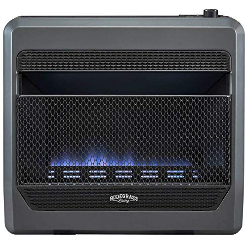 Bluegrass Living Natural B30TNB-BB Vent Free Blue Flame Gas Space Heater with Blower and Base Feet-30,000, T-Stat Control, 30000 BTU, Black