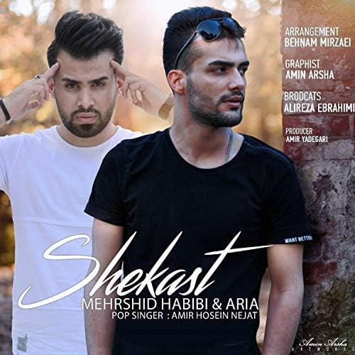 Mehrshid Habibi feat. Aria