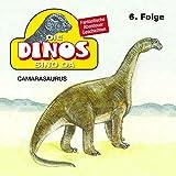 Camarasaurus: Die Dinos sind da 6