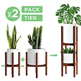 2 Pack Indoor Plant Stands, 2 Tier...