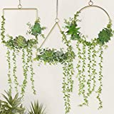 Z-YAO Floral Hoop Wreath Set of 3 Artificial Fake Succulent Plant Wall Decor Wreaths for Wall...
