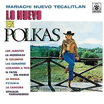 Lo Nuevo en Polkas (Instrumental)
