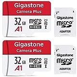 Gigastone Lot de 2 Carte memoire Micro SD HC 32 Go U1 avec Mini Coque et Adaptateur SD. Vitesse de Lecture allant jusqu'à 90 Mo/s. Carte Haute Vitesse Full HD Video Nintendo Gopro Caméra Samsung