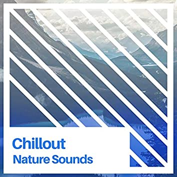 Chillout Nature Sounds, Vol. 1