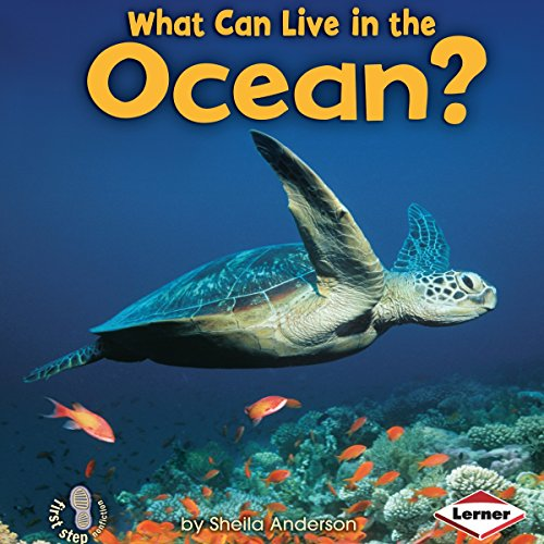 What Can Live in the Ocean? copertina