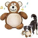 G.C Peluche per Cani, Giochi per Cani Cuccioli Interattivi, Gioco per Cani Indistruttibile, Giocattoli Cane Masticare Interattivi, Spazzolino per Piccolo e Medio Cuccioli Cane