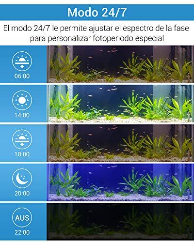 NICREW Luces para acuarios