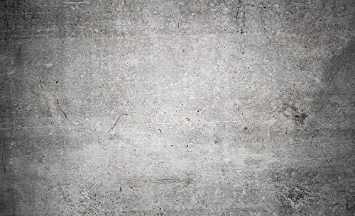 DekoShop Fototapete Vlies Tapete Moderne Wanddeko Wandtapete Beton AMD12137VEXXXL VEXXXL (416cm. x 254cm.) Imitation, Struktur und Textur