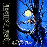 Fear Of The Dark: 1992 [Vinilo]