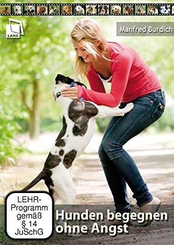 Hunden begegnen ohne Angst