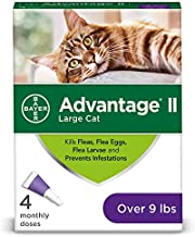 Bayer Animal Health Flea Prevention Cats, Over 9 lbs, 4 Doses, Advantage II