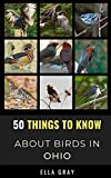 50 Things to Know About Birds in Ohio: Birding in the Buckeye State (50 Things to Know About Birds- United States)