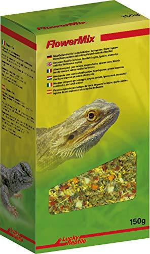 Lucky Reptile Flower Mix 150 g, Blütenmischung, Futtermittel für Landschildkröten, Bartagamen, Grüne Leguane, Dornschwanzagamen und andere pflanzenfressende Reptilien