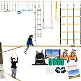 BRAVEWAY Ninja Warrior Obstacle Course Kit for Kids 2 x 60-ft Ninja Line Slackline Monkey Bars Kit with 14 Accessories for Kids Adults Family Backyard
