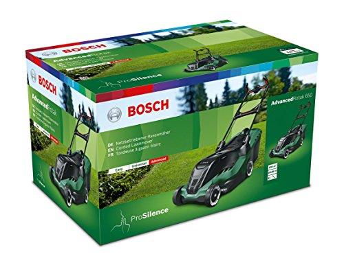 Bild 1: Bosch AdvancedRotak 650