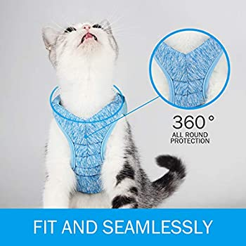 Harnais et laisse pour chat pour promenade à 360 ° - Pour petits chats et chiens - Pour sac pliable avec tissu kationnel