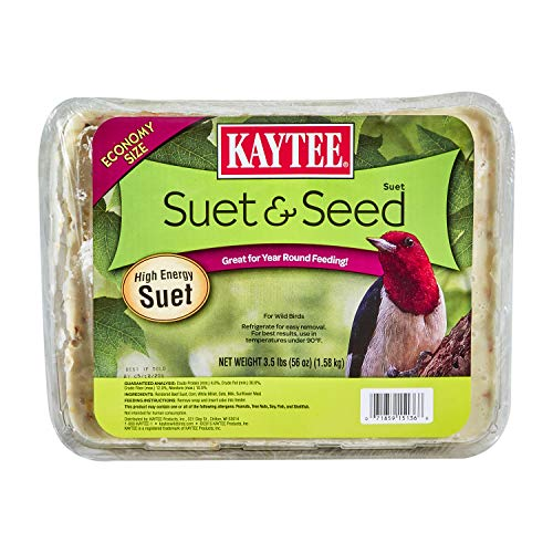 Kaytee 3.5-Pound Suet and Seed, Large