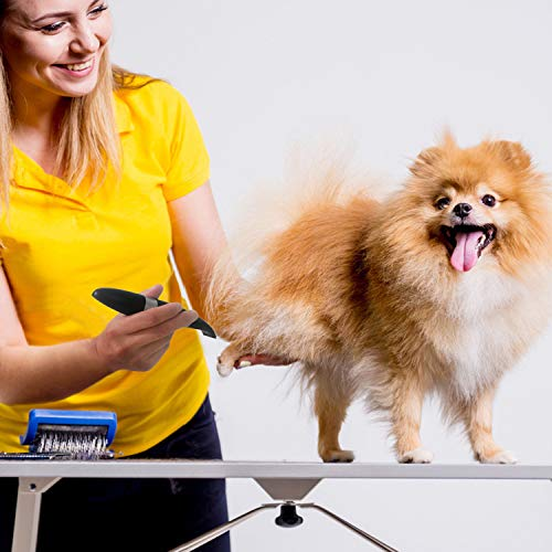 Dog Clippers, Cordless Cat and Small Dogs Clipper, Low Noise Electric Pet Trimmer, Dog Grooming Clippers for Trimming The Hair Around Paws, Eyes, Ears, Face, Rump …