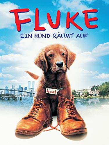 Fluke - Ein Hund räumt auf