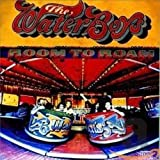 Room to Roam von The Waterboys