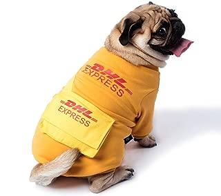 Best halloween express dog costume Reviews