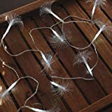 Fortune Products FOFLR-10DW Fiber Optic Flare String Light, White & Warm White, 2.5' Height, 2.5' Width, 54' Length