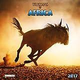 Wildscapes of Africa 2017: Kalender 2017 (Wonderful World)