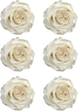 CAN_Deal Preserved Roses   Natural Roses That Last for Months - Immortal White Roses   Use Instead of Artificial Roses for Arrangements   Preserved Flowers for Gifts   Box of 6 White Rose Heads