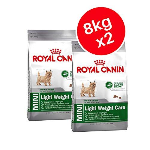 Royal Canin - Mini cibo leggero per cani per adulti, 8 kg, confezione da 2
