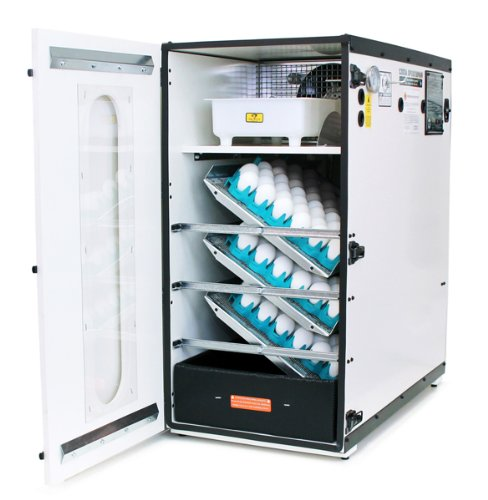 Classic GQF Model 1202A Sportsman Cabinet Style Egg Incubator -