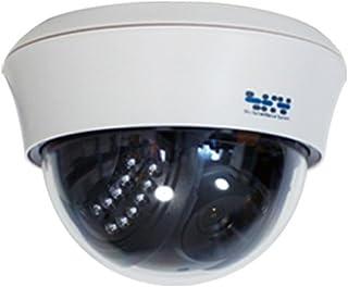 SKY Electronics 防犯カメラ ダミーカメラ ドーム型 1台