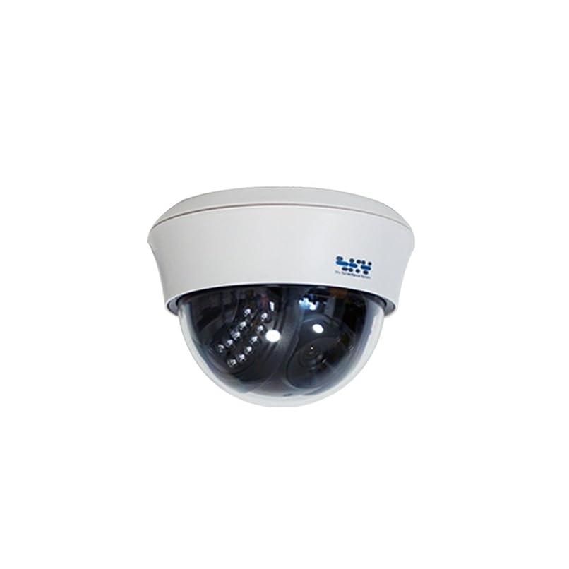 最小ほこり病SKY Electronics 防犯カメラ ダミーカメラ ドーム型 1台
