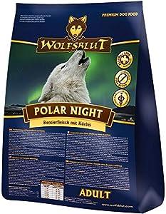 Wolf sang Polar Night avec viande et rennes citrouille