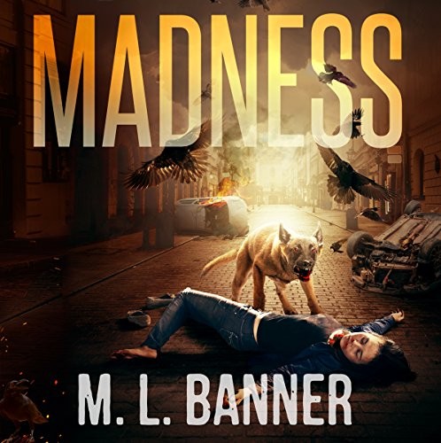 Couverture de Madness