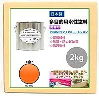 屋外用 多目的用 水性塗料 09-60V サンライズオレンジ 2kg/艶あり 内装 外装 壁 屋内 ファインコートシリコン つやあり 多用途